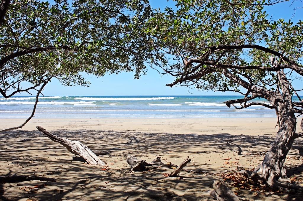 Beach, Parque Nacional Marino Las Baulas