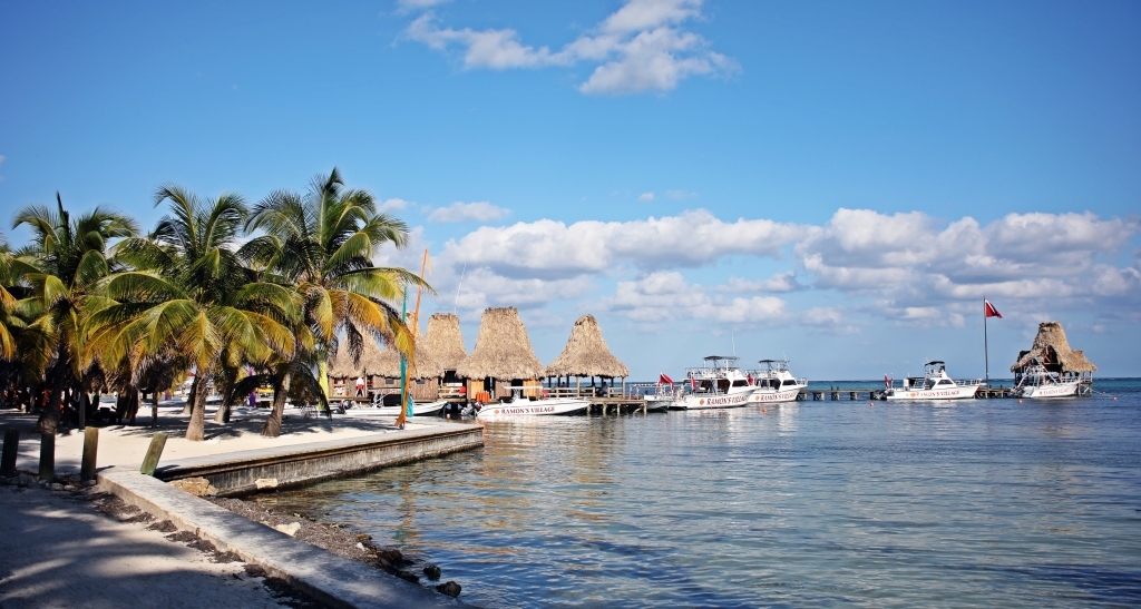 Marine wall, Ambergris Caye