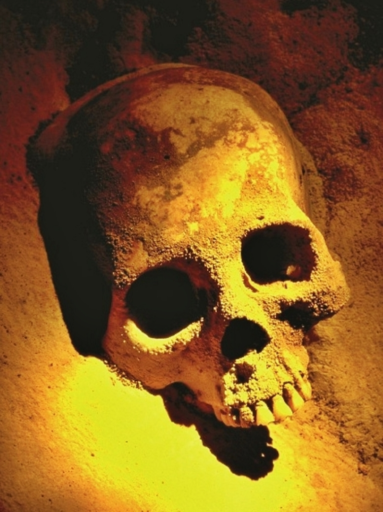 Maya skull, courtesy Maya Walk Tours