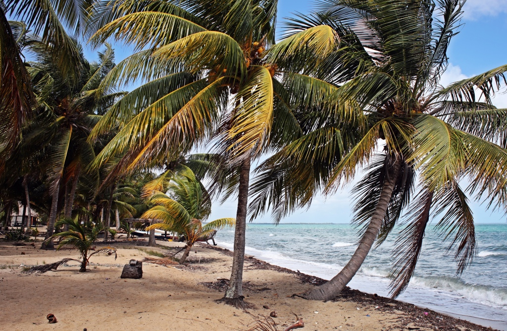 Beach, Hopkins, Belize
