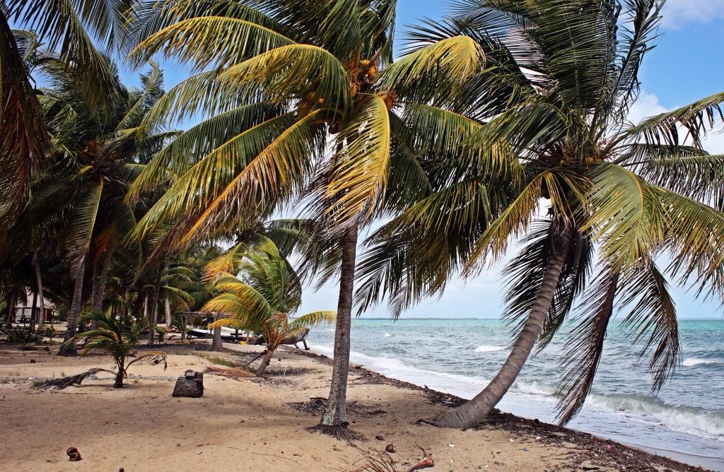 Beach, Hopkins, Belize