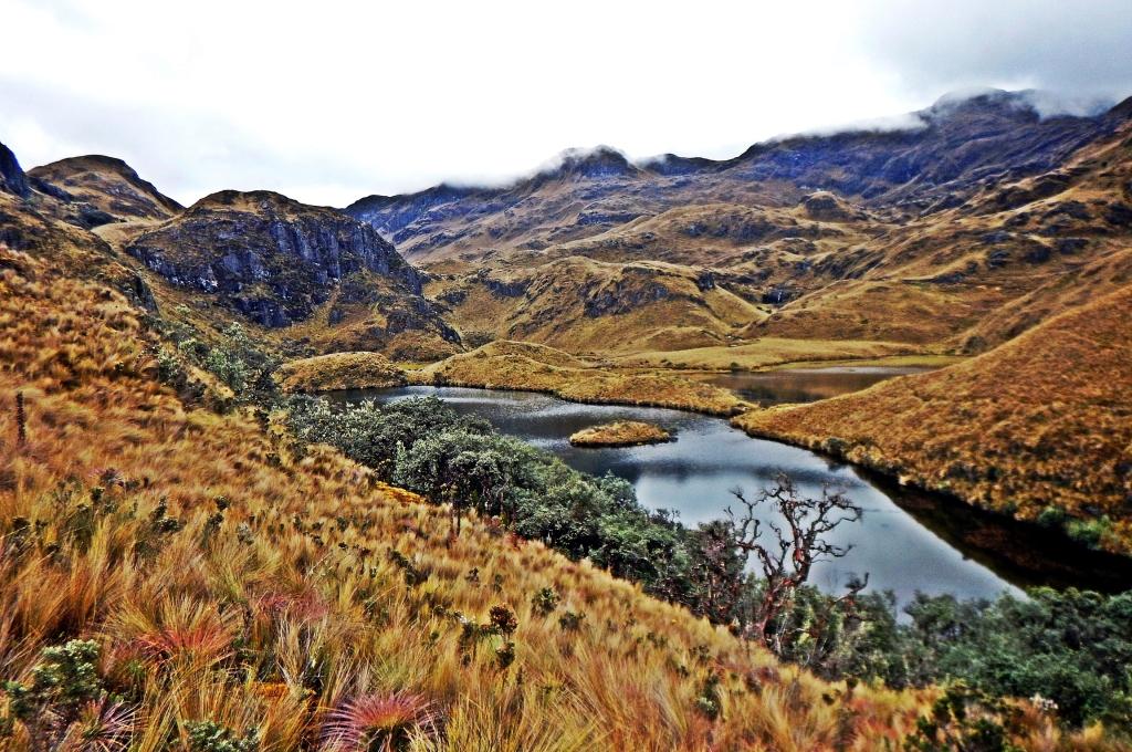 El Cajas, Ecuador