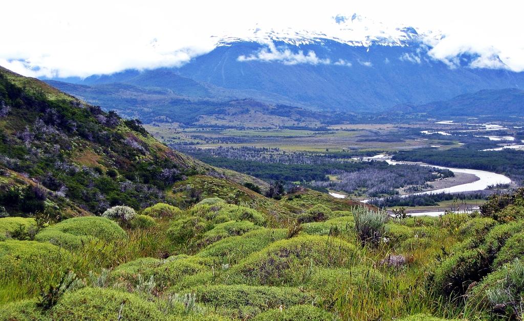 Rio Paine, Parque Nacional Torres del Paine