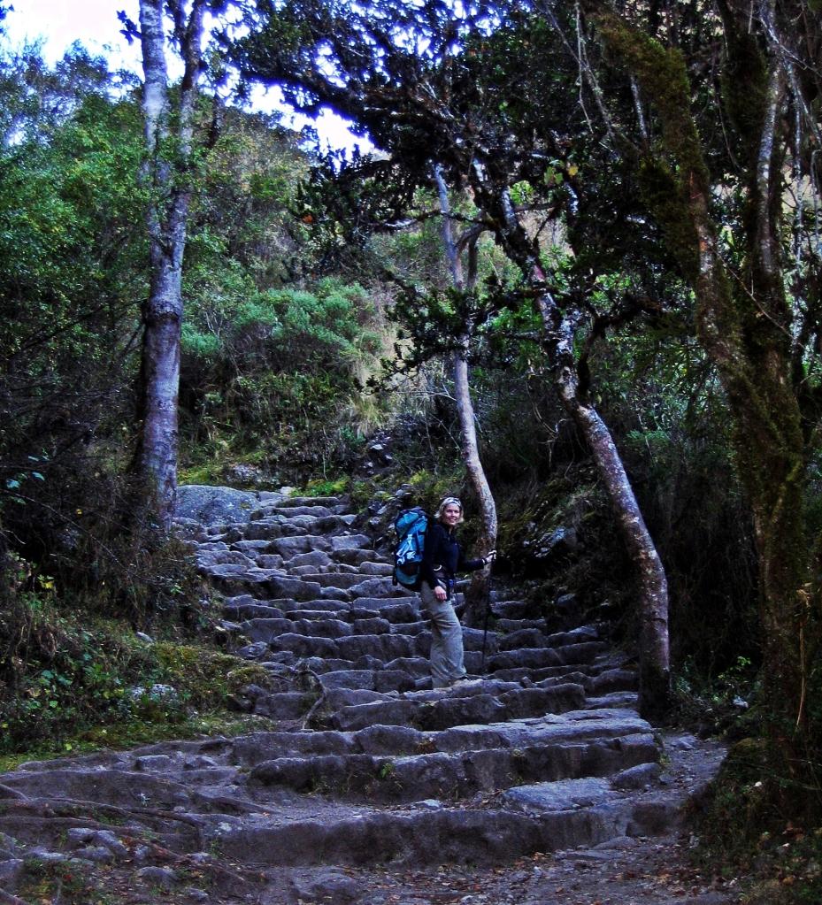 Inca stone steps, Inca Trail