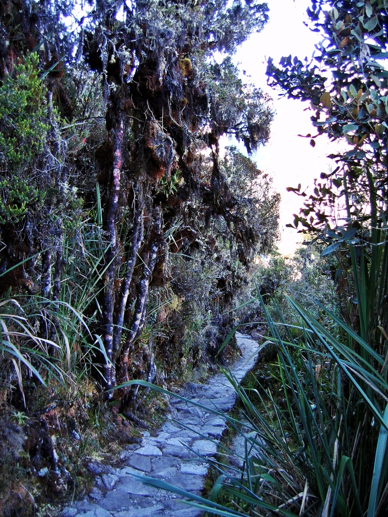 Stone path, Inca Trail