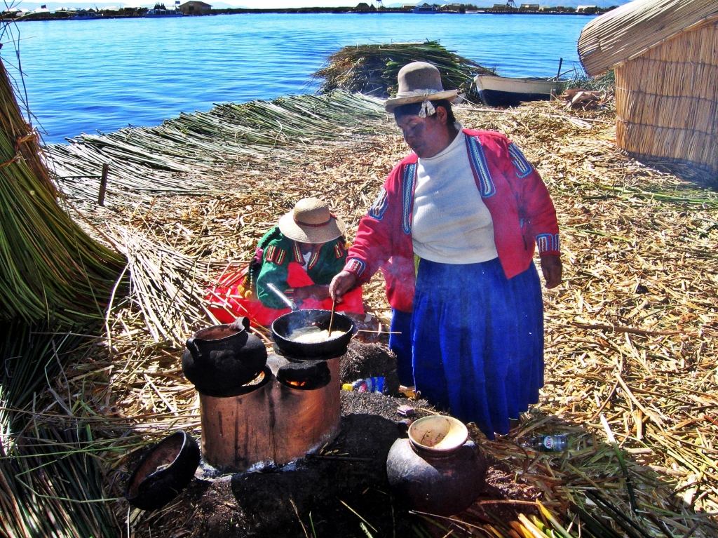 Making lunch, Floating reed island