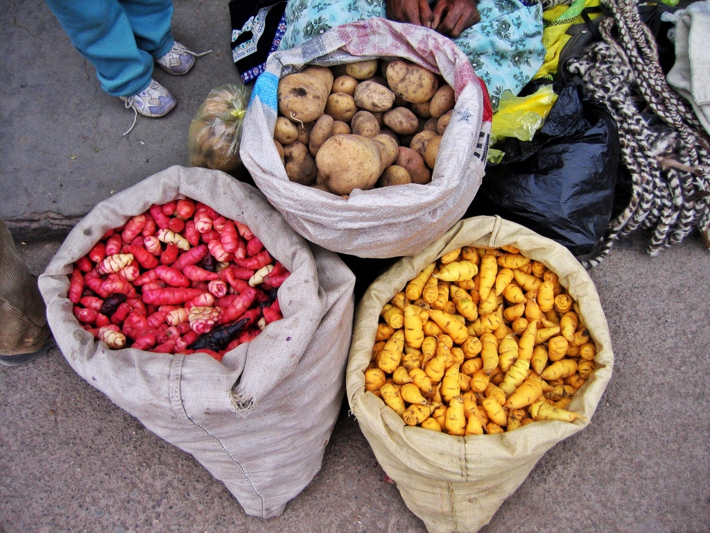 Potatoes, Colca Canyon