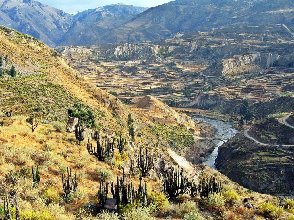 Terraces, Colca Canyon