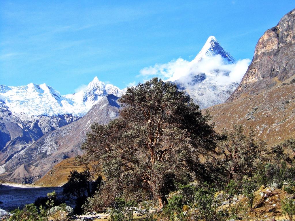 Nevado Artesonraju, Alpamayo basecamp