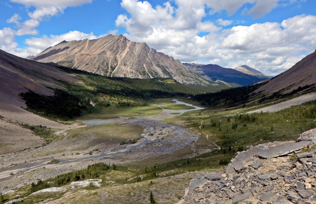 Brazeau River Valley, Jasper