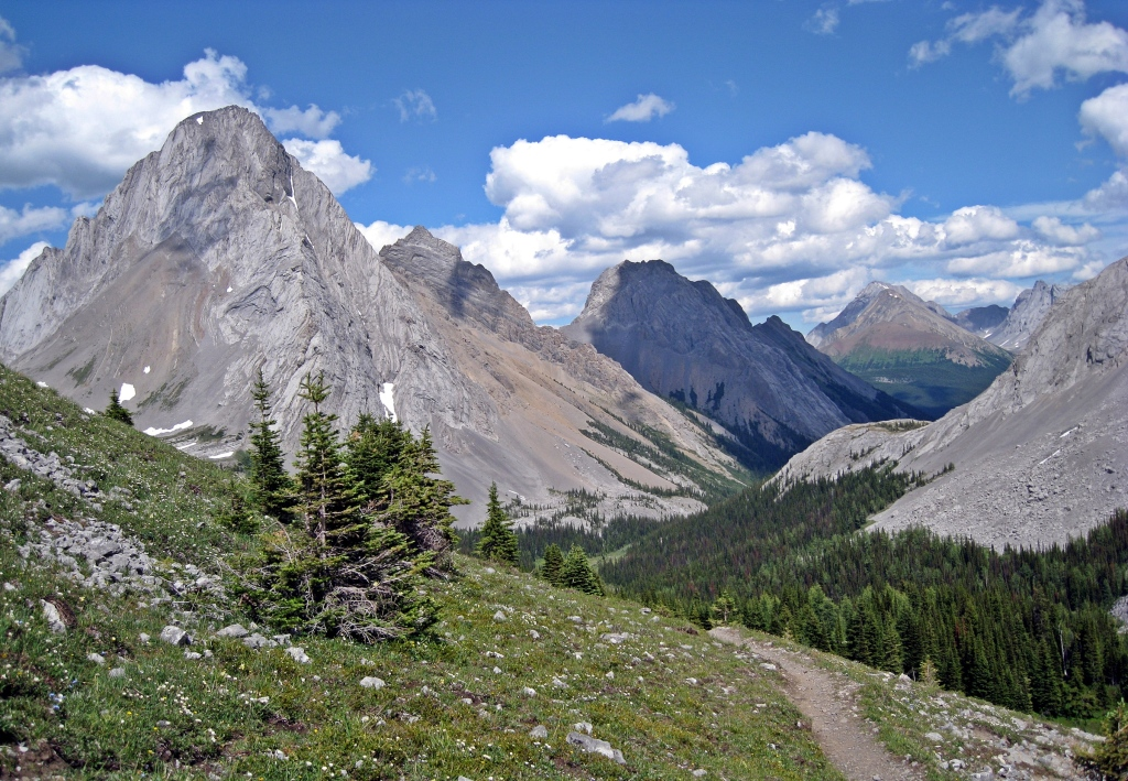 Mt. Birdwood from Burstall Pass