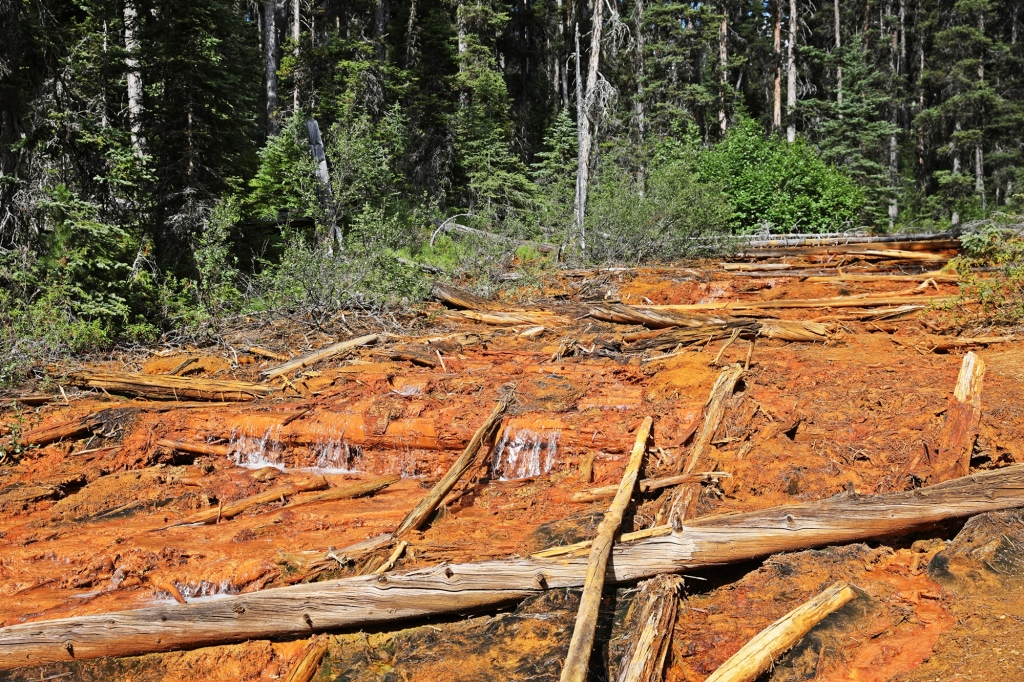 Ochre coloured stream, Paint Pots, Kootenay National Park