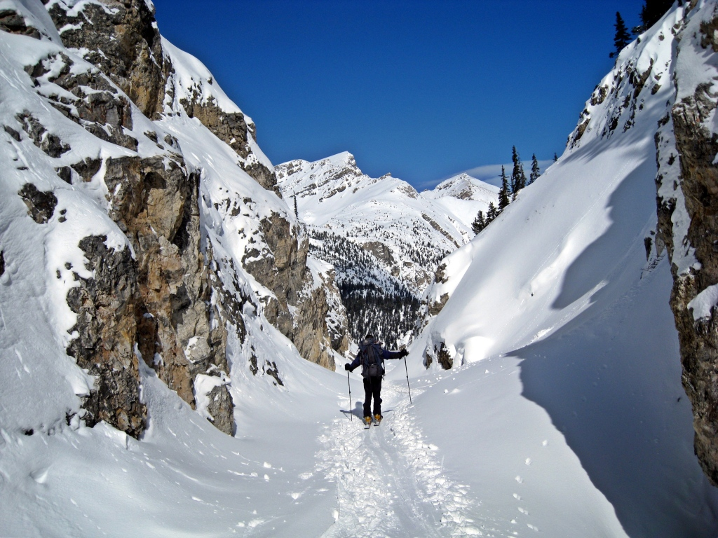 Bow Canyon in winter, Wapta Traverse
