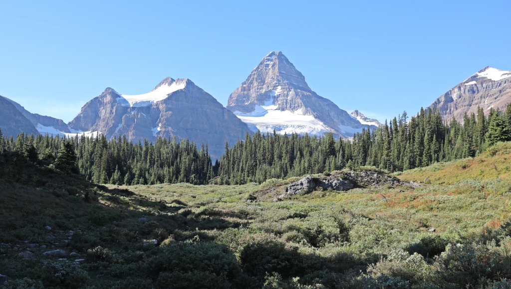 Mount Assiniboine from Og Meadows