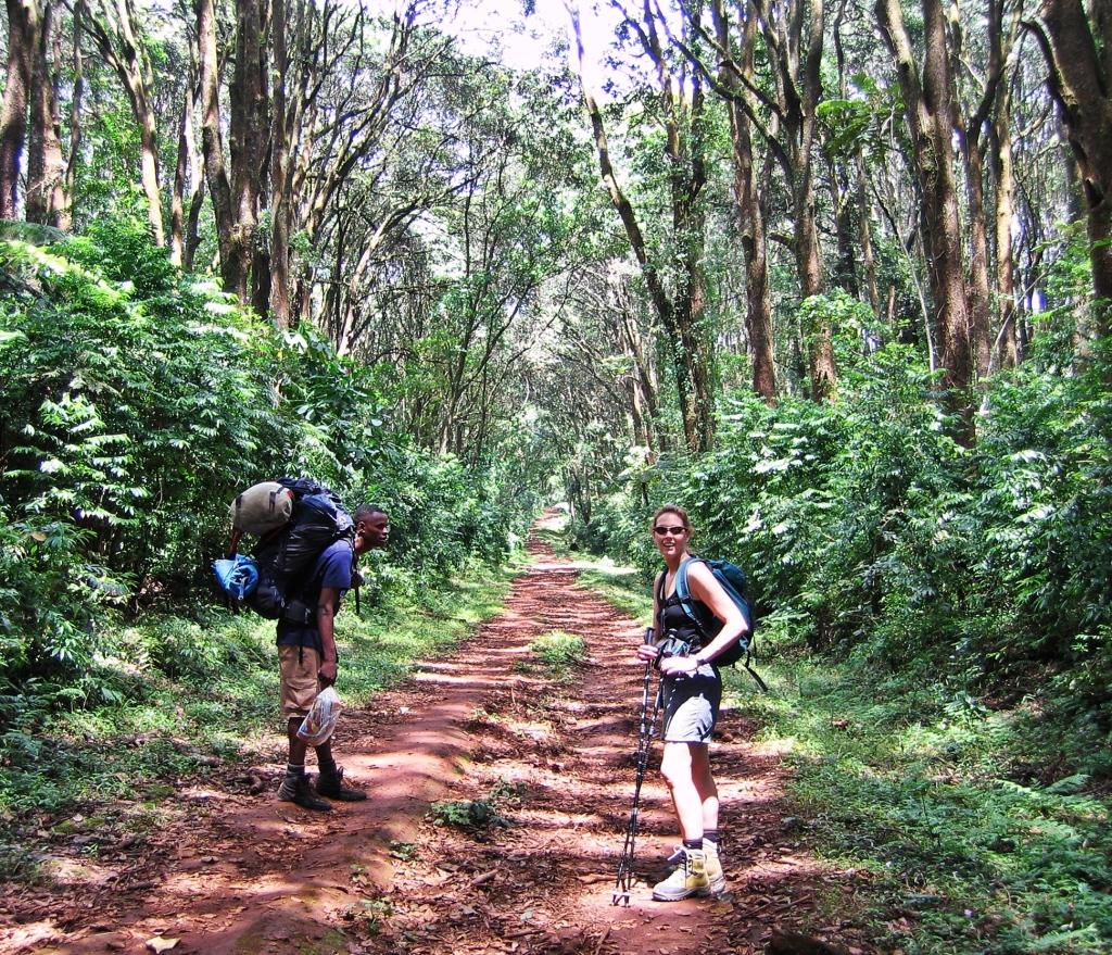 Umbwe Route, Mount Kilimanjaro