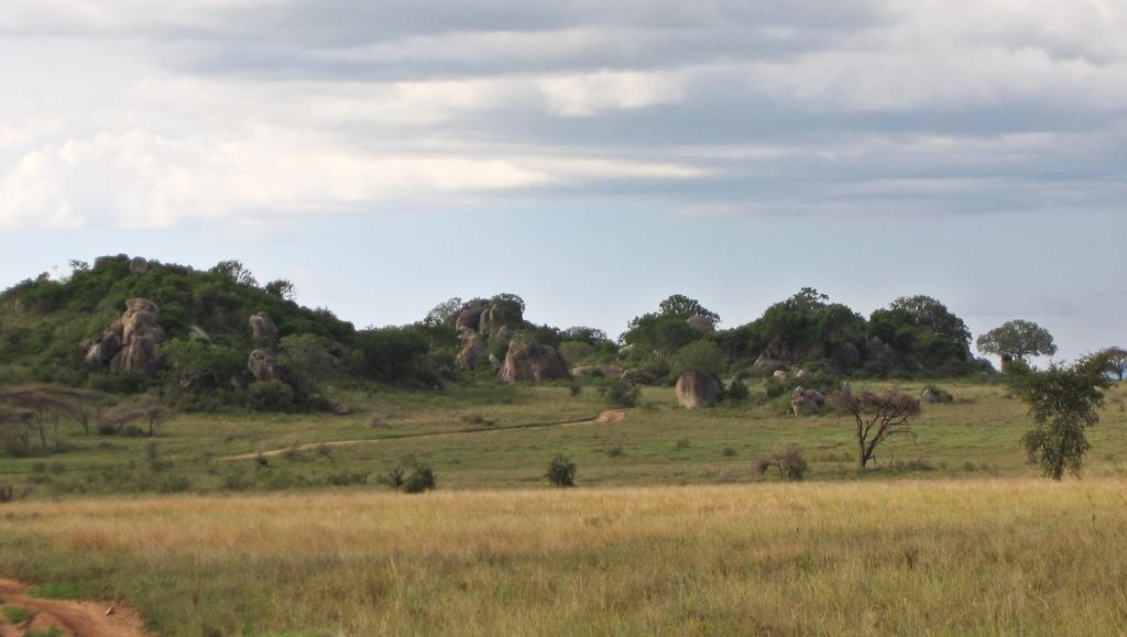 Kopjes, Serengeti National Park