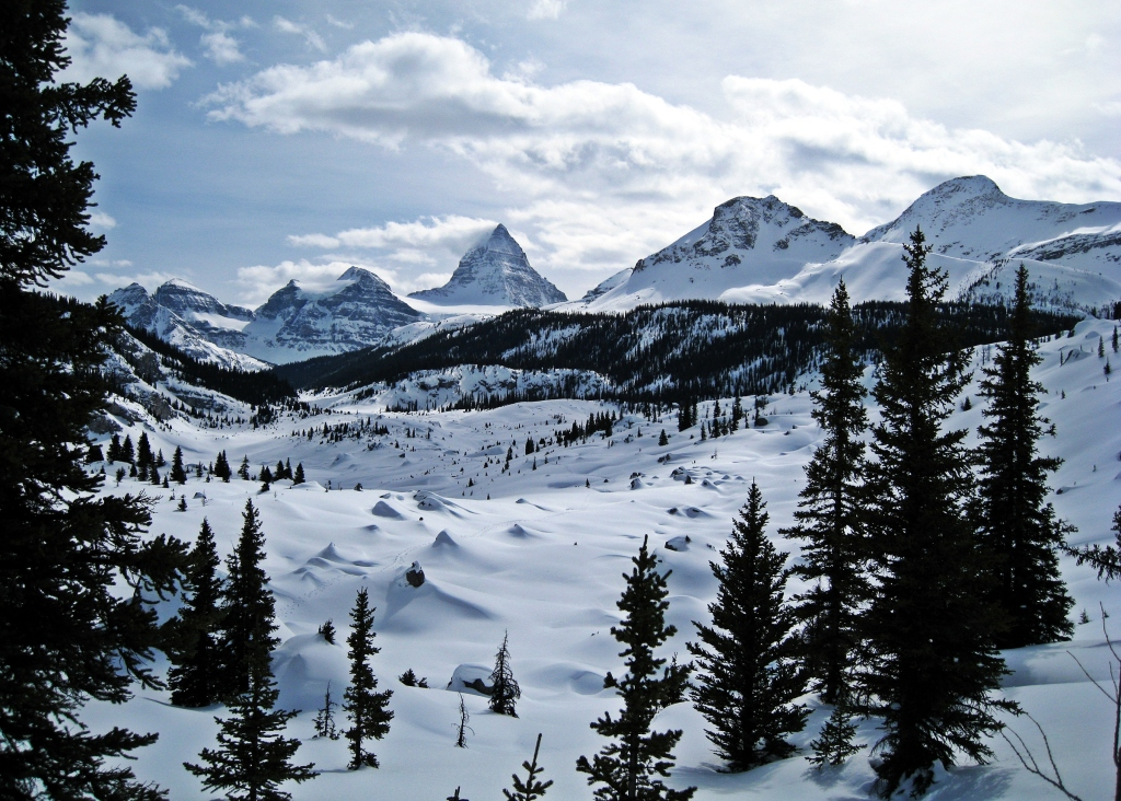 Mount Assiniboine above Og Lake, Winter 2013