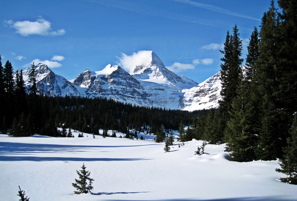 Mount Assiniboine, Winter 2013