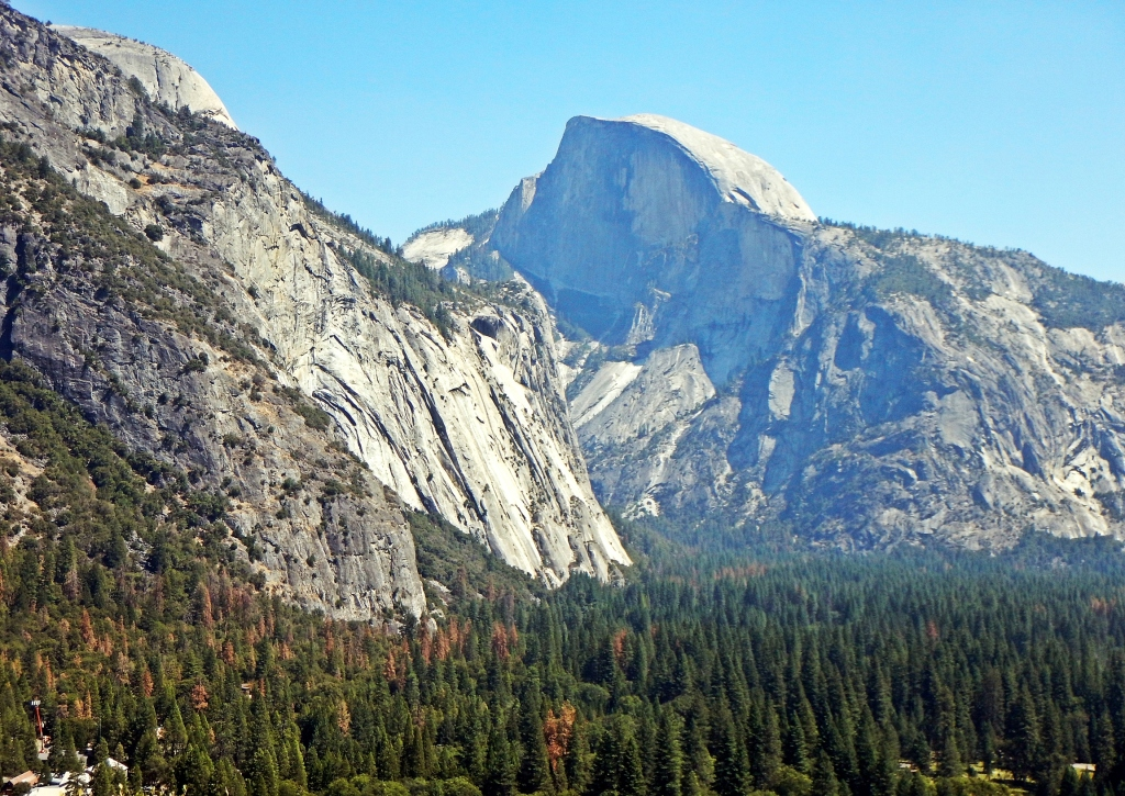 Half Dome from Five Open Books