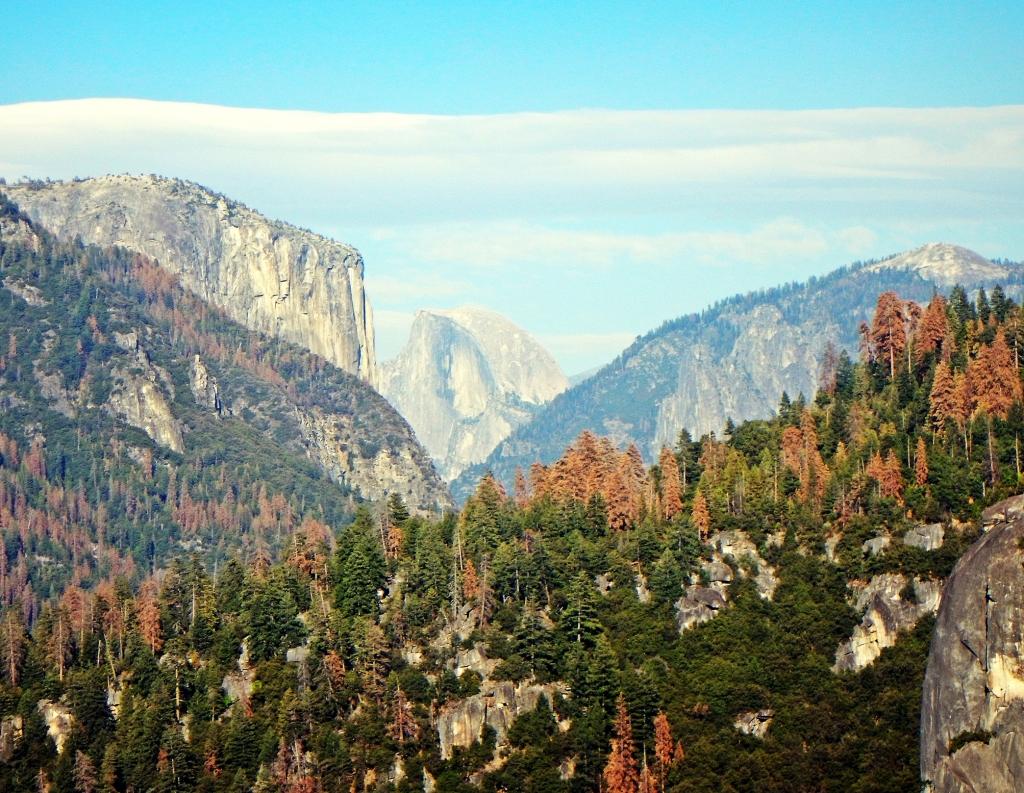 El Cap and Half Dome, Yosemite Valley