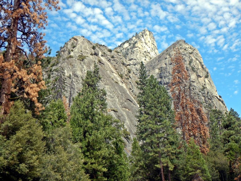 Ranger Rock, Yosemite