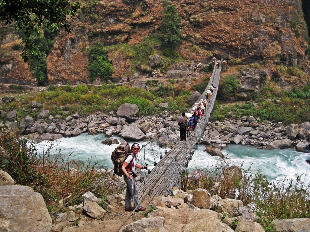 Mules on suspension bridge, Annapurna Circuit Trek