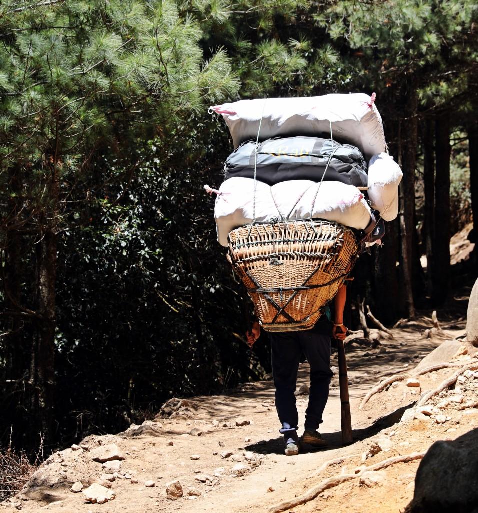 Porter, Everest Base Camp Trek