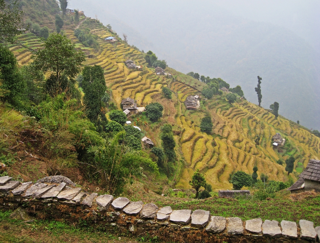 Terraces, Annapurna Basecamp Trek