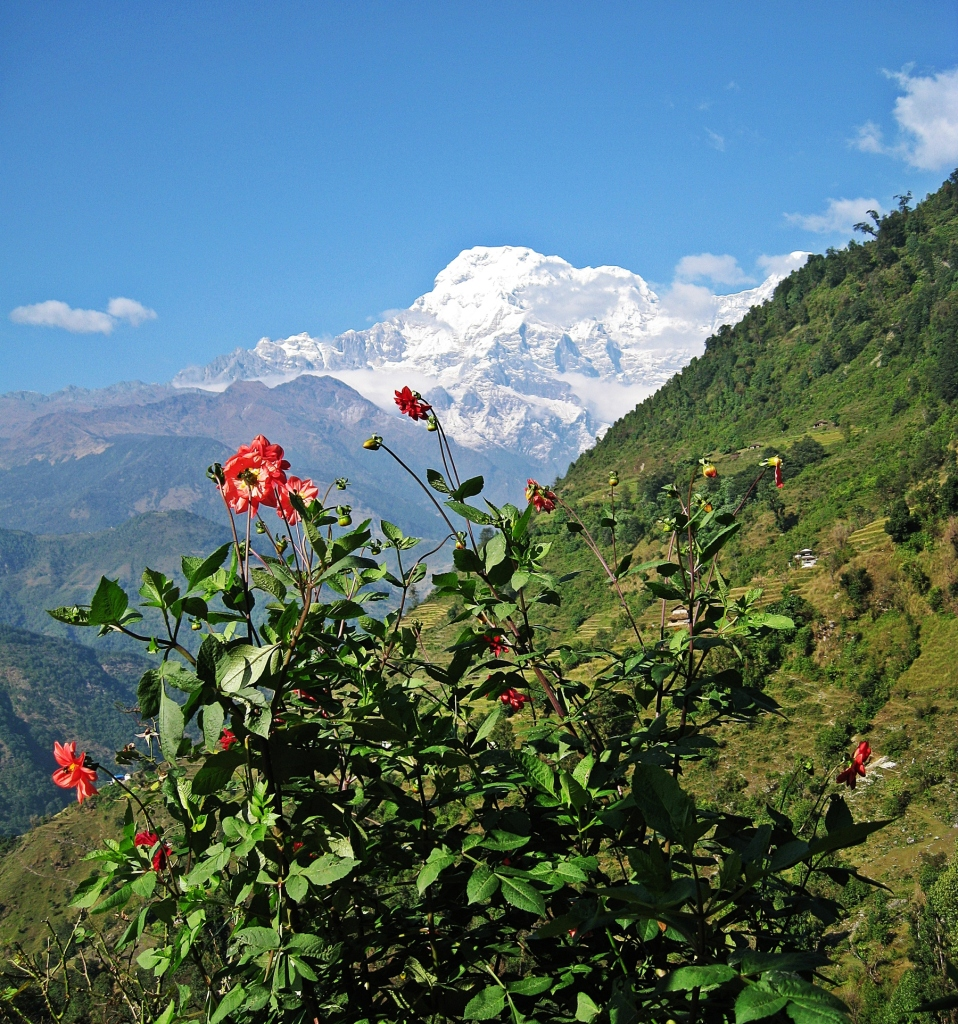 Annapurna South, Landruk