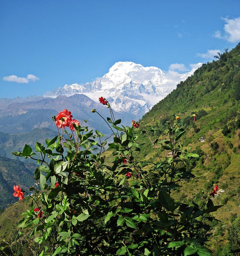 Annapurna South, Landruk