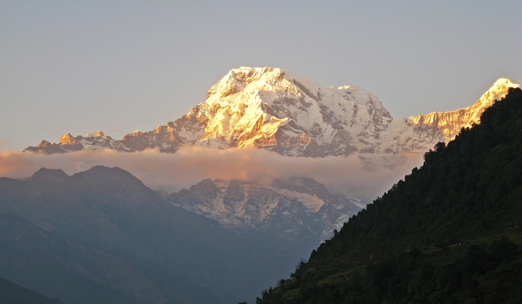Sunrise alpenglow on Annapurna South, Landruk