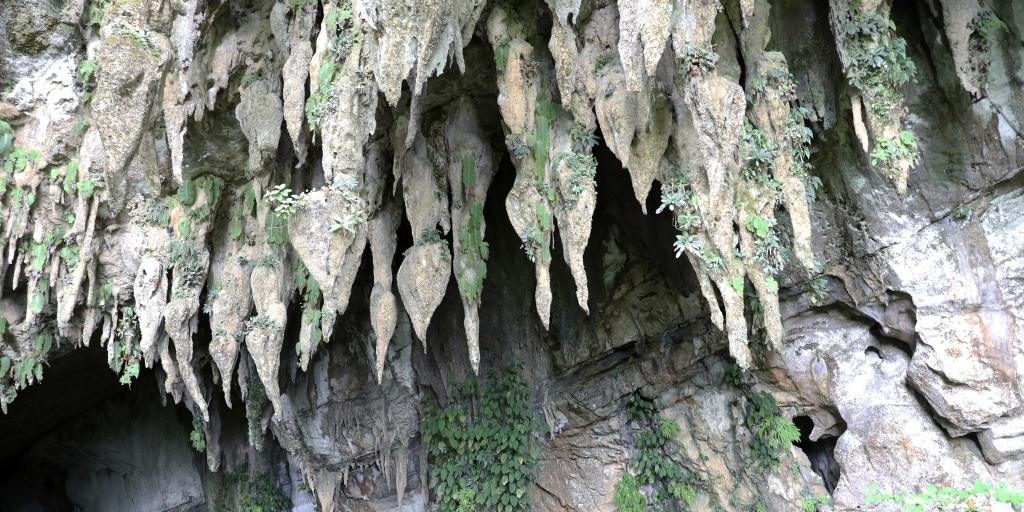 Wind Cave, Gunung Mulu National Park
