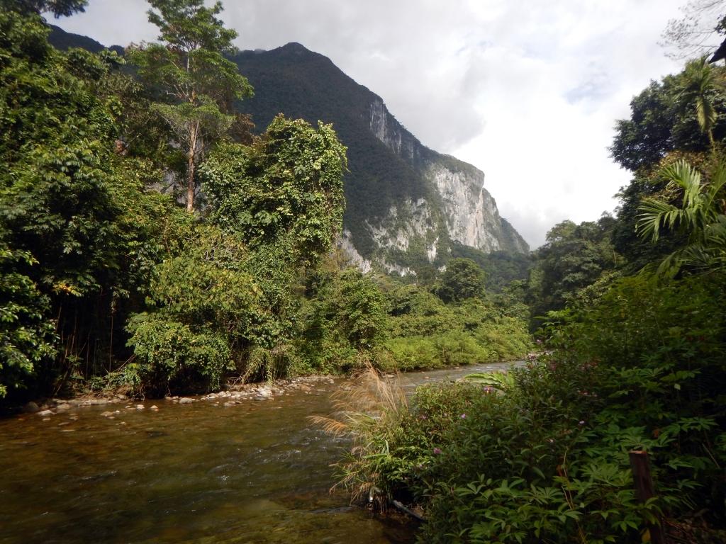 Melinau River near Camp 4, Pinnacles trek, Gunung Mulu National Park