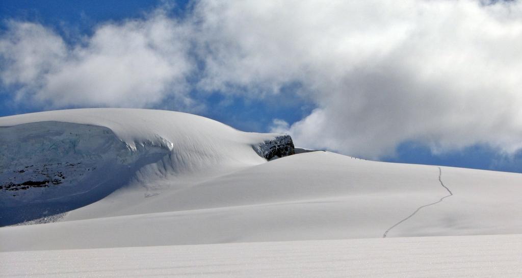 Ski tracks up to Mt. Gordon, Wapta Icefields