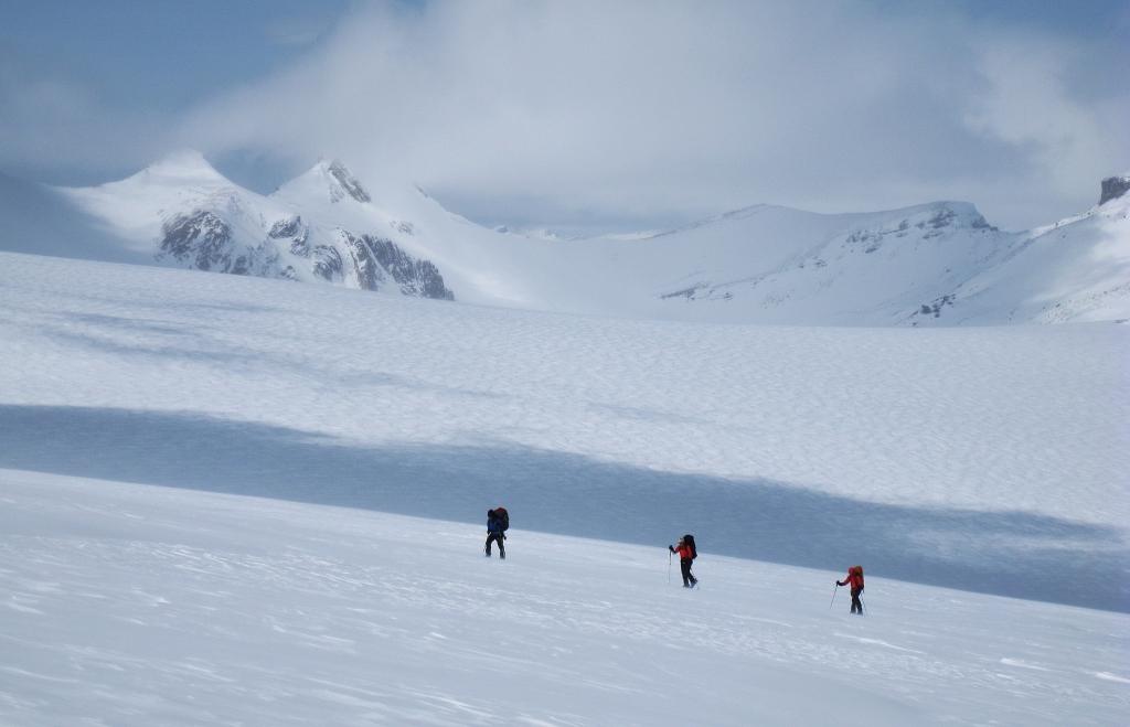 Skiers, Wapta Icefields
