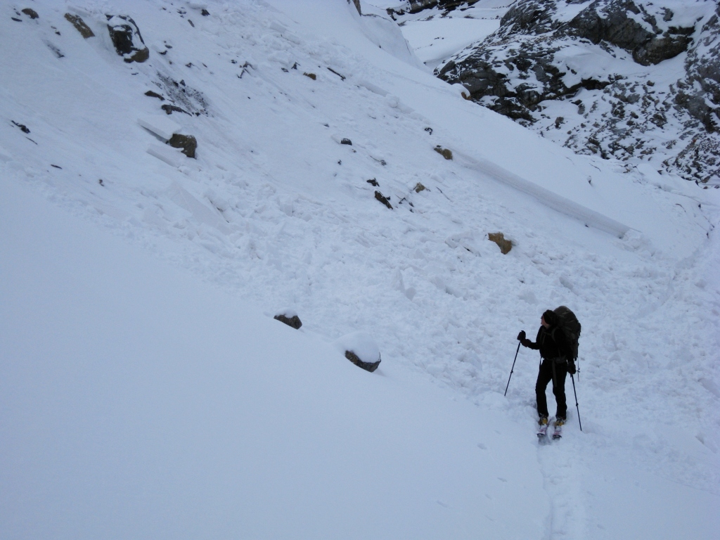 Avalanche, Peyto Hut approach