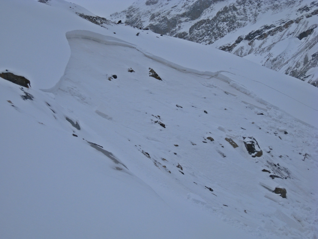 Avalanche, approach to Peyto Hut