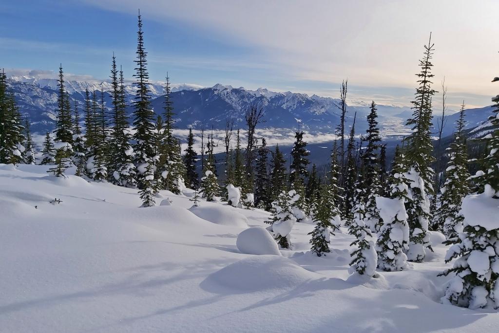 View from Rudi's Ridge, Golden, BC