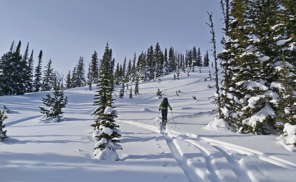 Backcountry skiing, Rudi's Ridge, Golden, BC