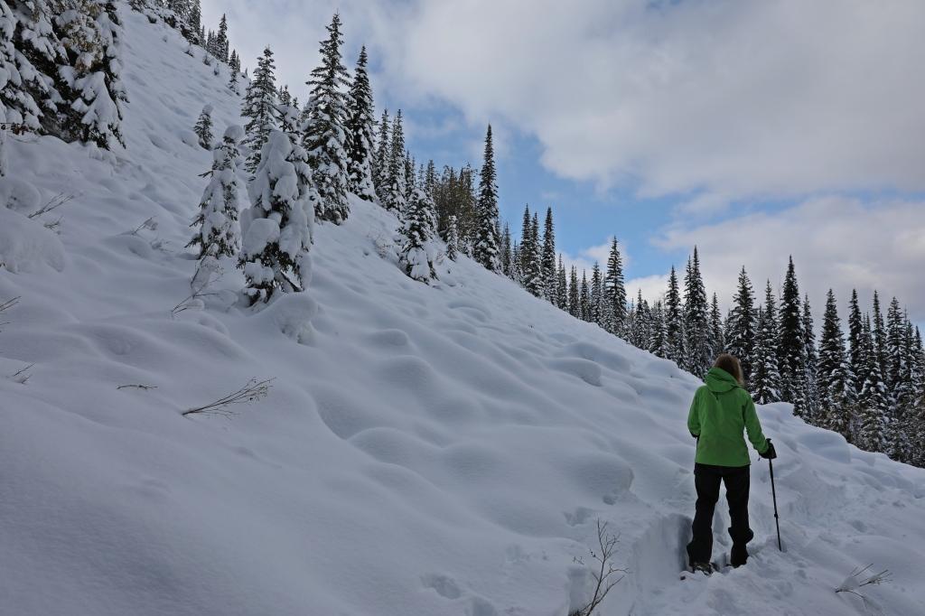 Snowshoeing, Golden, BC