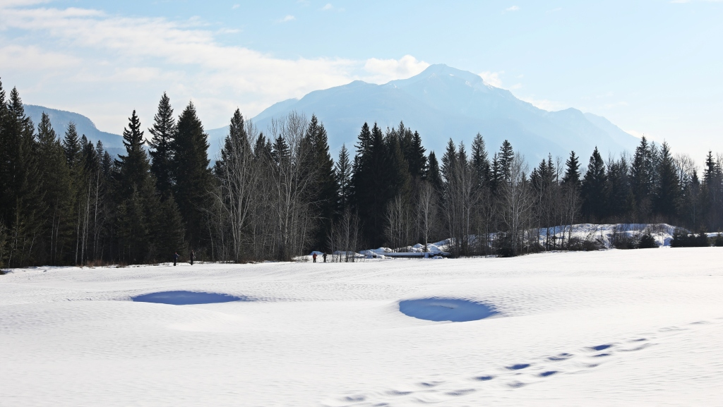 Cross-country skiing, Golden Golf Club