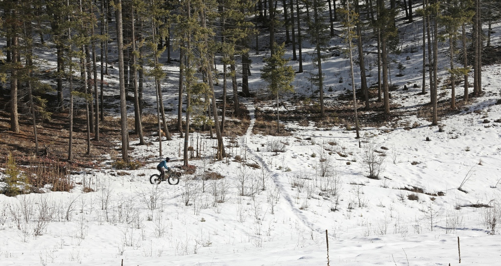Fat (winter) biking, Golden, BC