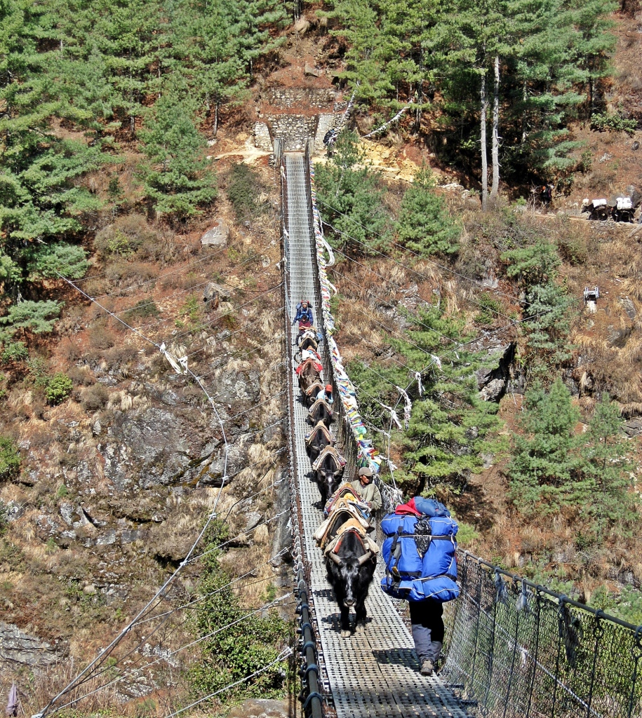 Mules and a porter on a suspension bridge, Everest region