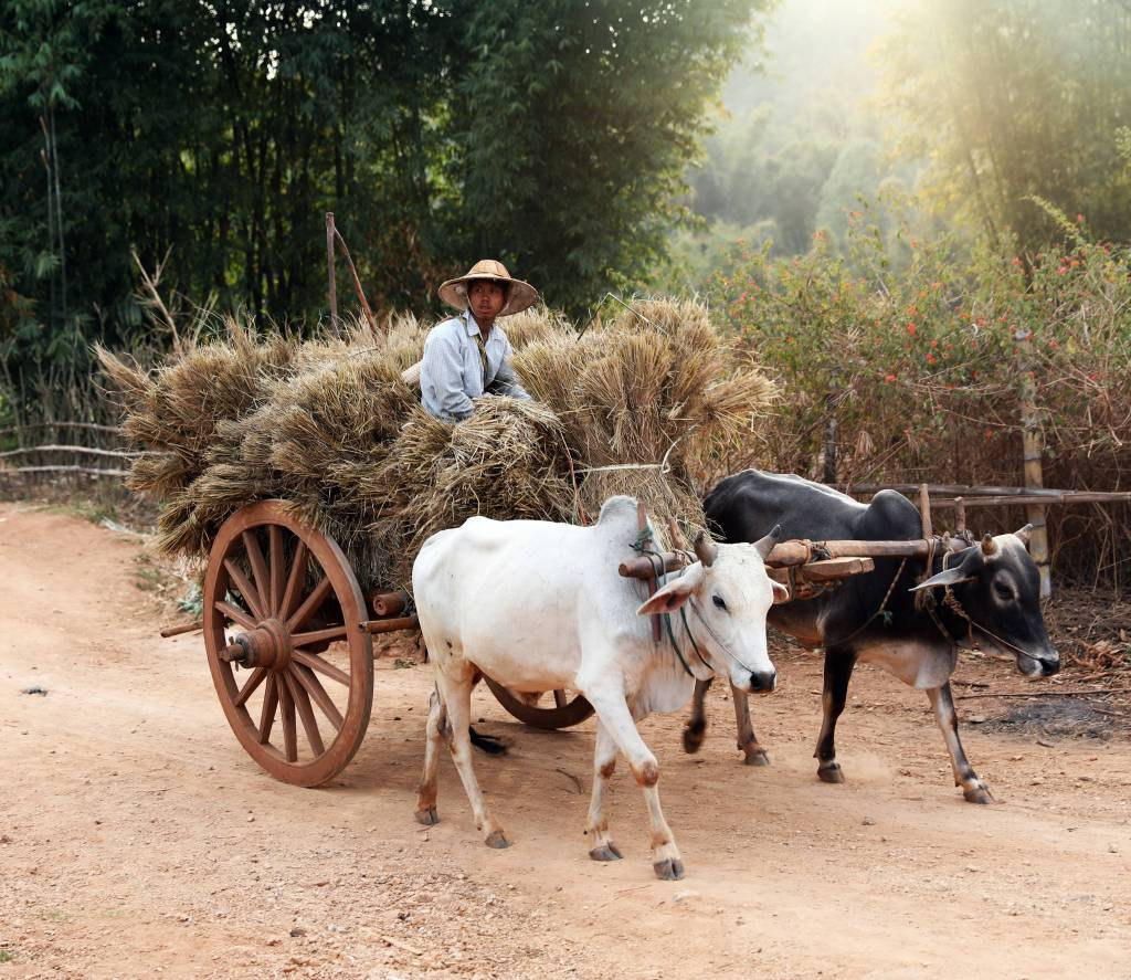 Villager on Kalaw to Inle trek