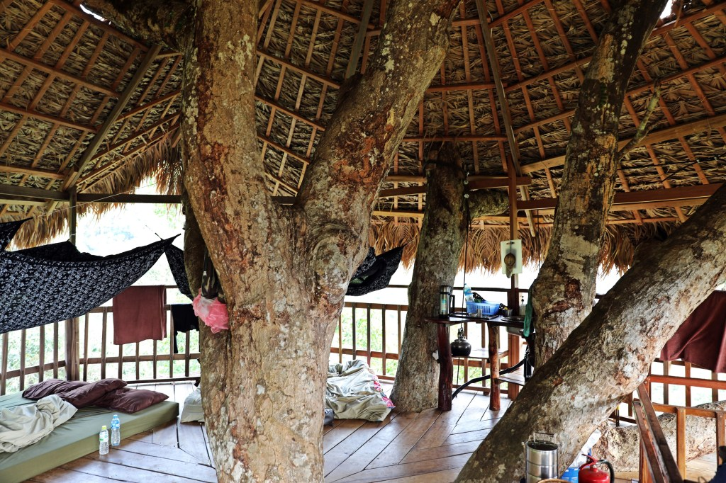 Inside our treehouse, Nam Kan National Park