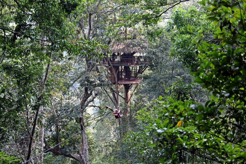 Maggie ziplining toward a treehouse, Nam Kan National Park