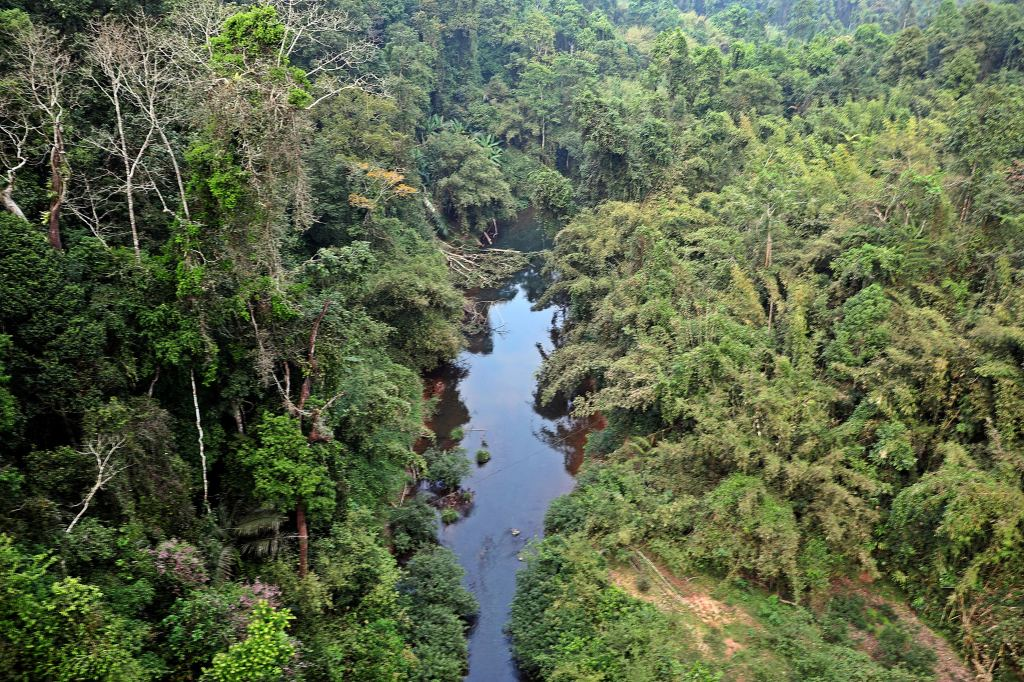 View from zipline of river, Nam Kan National Park