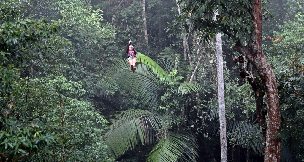 Ziplining over ferns, Nam Kan National Park