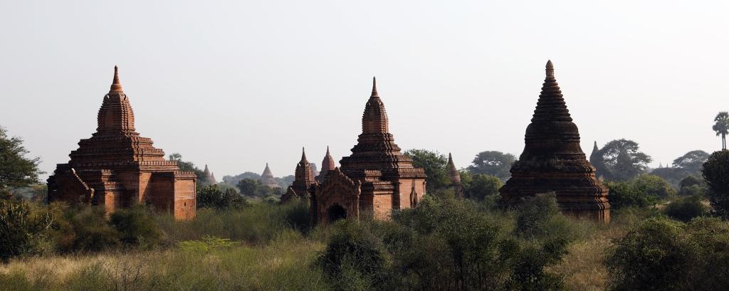 Zetis, Bagan