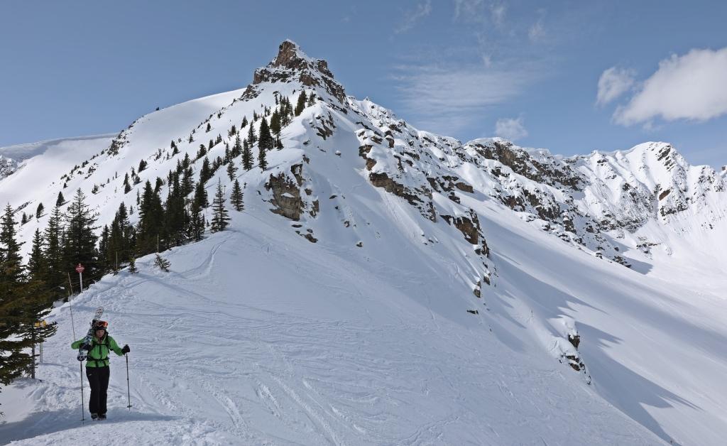 Middle Ridge below Ozone, Kicking Horse Mountain Resort